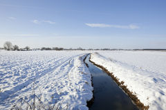 Frozen farmland Royalty Free Stock Photo