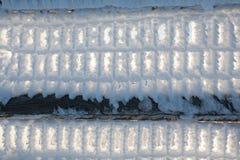Frozen fence Stock Photo
