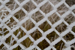 Frozen fence. Ice buildup on a fence Royalty Free Stock Photos