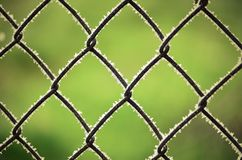 Frozen fence Royalty Free Stock Image