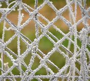 Frozen fence Royalty Free Stock Images