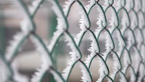 Frozen fence made of metal mesh covered with frost crystals, an early sunny cold morning. Frozen fence made of metal mesh covered with frost crystals, an early stock video footage