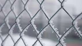 Frozen fence made of metal mesh covered with frost crystals, an early sunny cold morning. Frozen fence made of metal mesh covered with frost crystals, an early stock video
