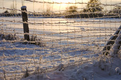 Frozen fence in winter landscape Royalty Free Stock Photos