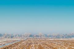 Frozen field in Kyrgyzstan Royalty Free Stock Photo