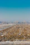 Frozen field in Kyrgyzstan Royalty Free Stock Image