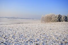 Frozen fields and meadows Royalty Free Stock Photography