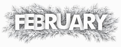 Frozen Fir Twigs February. Spruce frozen twigs with the text February Royalty Free Stock Images