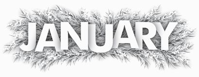 Frozen Fir Twigs January. Spruce frozen twigs with the text January royalty free illustration