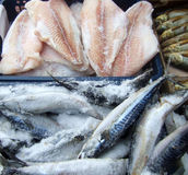 Frozen fish. On a market Stock Images