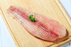 Frozen fish fillet Stock Photography