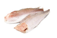 Frozen Fish Hake Isolation On White Background Stock Photography