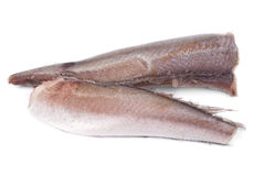 Frozen fish hake Stock Photos
