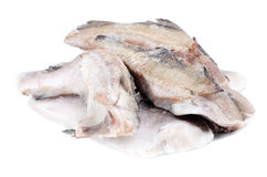 Frozen fish pollock and hake. On white royalty free stock image