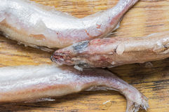Frozen fish tails and the head Royalty Free Stock Image