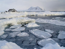 Frozen fjord - Arctic, Svalbard Stock Photography