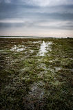 Frozen flood waters Royalty Free Stock Images