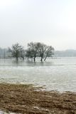 Frozen Floodwaters, France Stock Images
