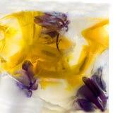 Frozen   flower of  iris Royalty Free Stock Photo