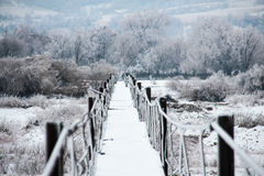 Frozen footbridge Stock Photos