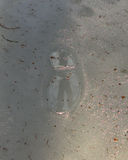 Frozen Footprints Reflection 2. This picture was taken at Prairie Dells County Park. The day was warm so there was a pool of water in the footprint which had royalty free stock photography