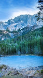 Frozen forest lake in Bavarian Alps near Eibsee lake Stock Images