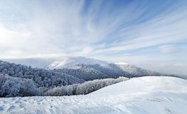 Frozen forest and meadows in Carpathians panorama Stock Photography