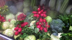 Frozen fridge fool of cabbage and radish in a shop stock video