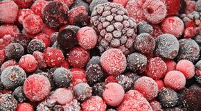 Frozen fruit Stock Images