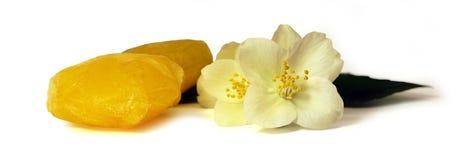 Frozen fruit,  lemon juice frozen ice cubes isolated on white ba. Ckground. Feminine, beauty and cosmetics concept, Jasmine branch Royalty Free Stock Image