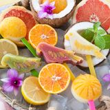 Frozen fruit popsicles. In the shape of parrots and fresh fruits Stock Image