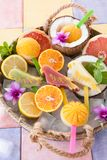 Frozen fruit popsicles. In the shape of parrots and fresh fruits Royalty Free Stock Images