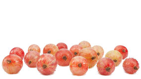 Frozen fruit in the refrigerator, gooseberry Royalty Free Stock Images