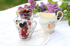 Frozen fruit with white chocolate sauce on the garden table. Frozen fruit with white chocolate sauce on the garden table Stock Photography