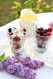 Frozen fruit with white chocolate sauce on the garden table. Frozen fruit with white chocolate sauce on the garden table Royalty Free Stock Image