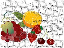 Frozen fruits Royalty Free Stock Photos