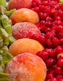 Frozen fruits Stock Photography