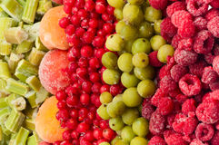 Frozen fruits Stock Images