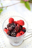Frozen fruits with white chocolate sauce on the garden table. Royalty Free Stock Images