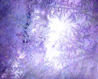 Frozen glass. Of a window Royalty Free Stock Photo