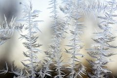Frozen glass Royalty Free Stock Image