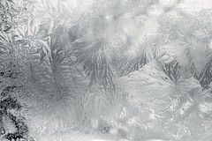 Frozen glass. Winter, ice, snow Stock Images