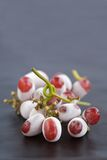 Frozen Grapes. Red Grapes defrosting on the vine and on a wooden table Royalty Free Stock Photos