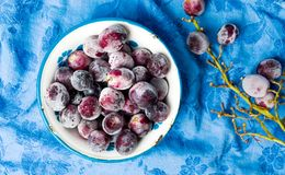 Frozen grapes cluster in the bowl Royalty Free Stock Photography