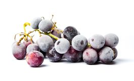 Frozen grapes cluster on white background Stock Photo