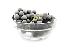 Frozen grapes Stock Photos