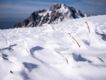 Frozen grass with huge mountain in background stock photo