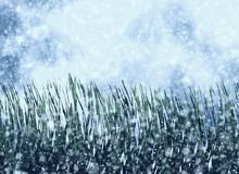 Frozen grass on a snowfall backgrounds royalty free illustration