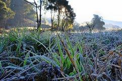 Frozen ground at Angkang Stock Photo