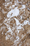 Frozen ground Royalty Free Stock Images